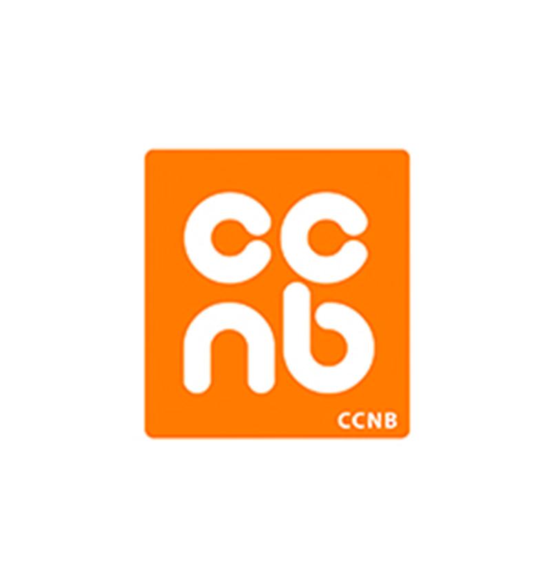 La popularité des expériences internationales grandit au CCNB