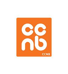 Femmes en affaires Nouveau-Brunswick et le CCNB se joignent au projet W-Power
